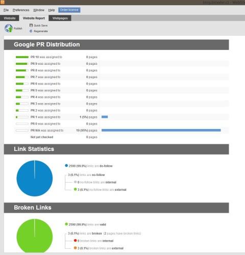 Website Auditor Report