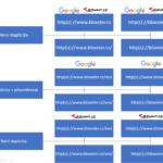 Duplicity pro vyhledávače – lomítka, protokoly a www
