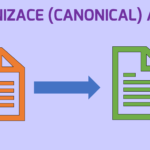 Jak na duplicitu v SEO pomocí kanonizace (canonical)